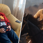 The 65 year old actor who finished Red Dead Redemption 2 more than 30 times became famous