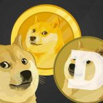 Dogecoin took flight with Elon Musks survey