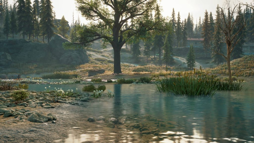 New Screenshots from Days Gone PC Version 3
